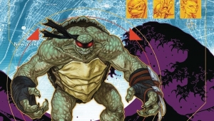 'TMNT Ongoing #67:' Advance Comic Book Review