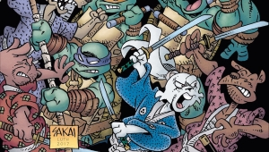 'TMNT Usagi Yojimbo:' Advance Comic Book Review