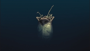 'William Gibson's Alien 3:' Advance Hardcover Review